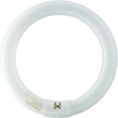Philips Actinic BL 22 Watt rund  G10q UV-A Ring-Leuchtstoffröhre